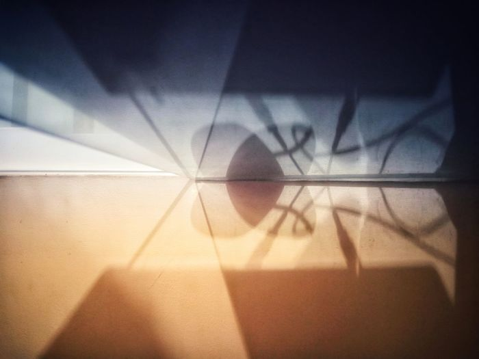 Close-up of shadow on window
