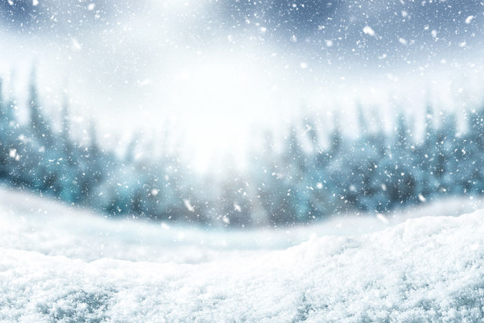 Snow background and tree. Winter backdrop with sunlight in morning time. Snow Winter Cold Temperature Snowing Nature Blizzard Snowflake Scenics - Nature Storm Frozen No People Environment Day Beauty In Nature White Color Extreme Weather Landscape Tranquility Outdoors Winter Snow ❄ Snowfall Wintertime Backgrounds Background