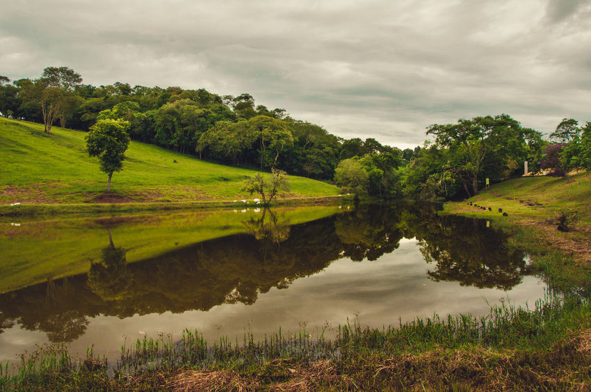 Sítio dos Pessegueiros Céu Nuvens Panorama Reflexo  Beauty In Nature Cloud - Sky Country Life Day Grama Grass Green Color Lago Lake Landscape Nature No People Reflection Sky Tranquil Scene Tranquility Tree Water