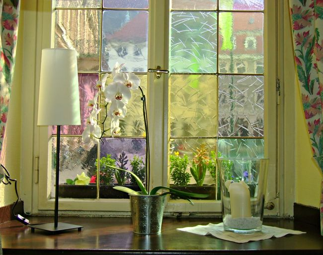 After a long plane flight, we stopped in this lovely little restaurant for a nice meal. I was captivated by this delightful window. Close-up Domestic Room Glass - Material No People Stained Glass Window Still Life Window Window Sill