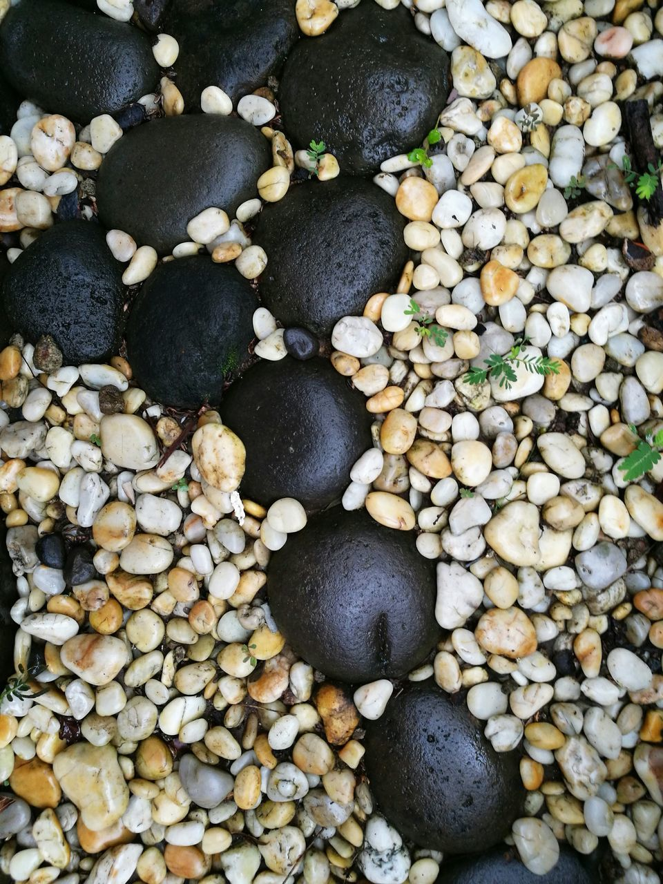 pebble, full frame, stone - object, large group of objects, nature, beach, abundance, shore, pebble beach, no people, rock - object, high angle view, close-up, backgrounds, beauty in nature, day, outdoors