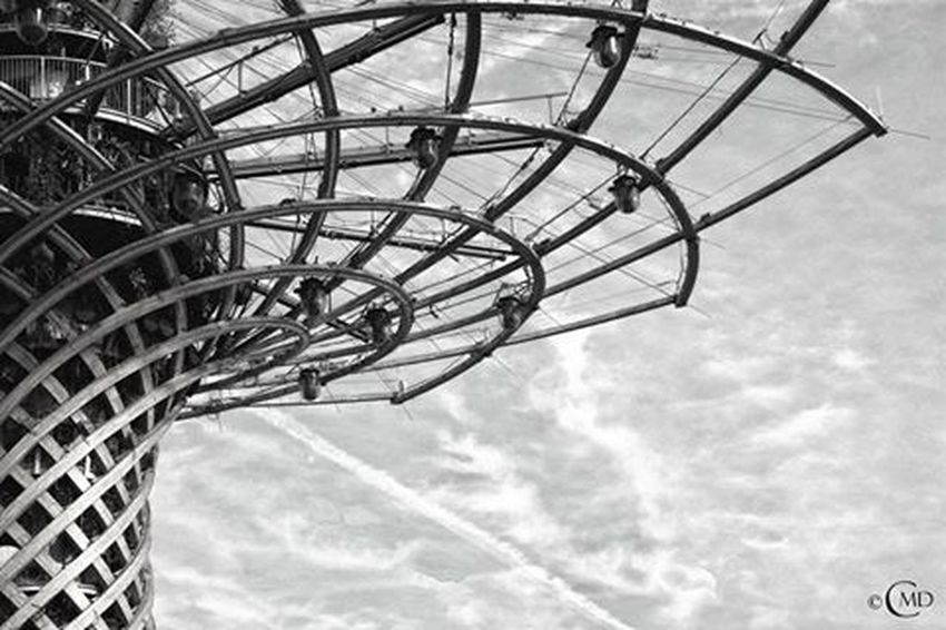 Expo 2105 - Milano Expomilano2015 Expo2015 Expo2015milano Treeoflife Alberodellavita