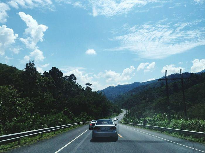 Tree Mountain Road Road Trip Car Forest Sky Landscape Cloud - Sky