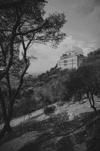 Castle Mallorca