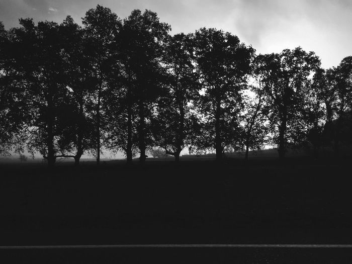 Landscape Iphone6 IPhoneography On The Road Roadtrip Black And White Monochrome Blackandwhite