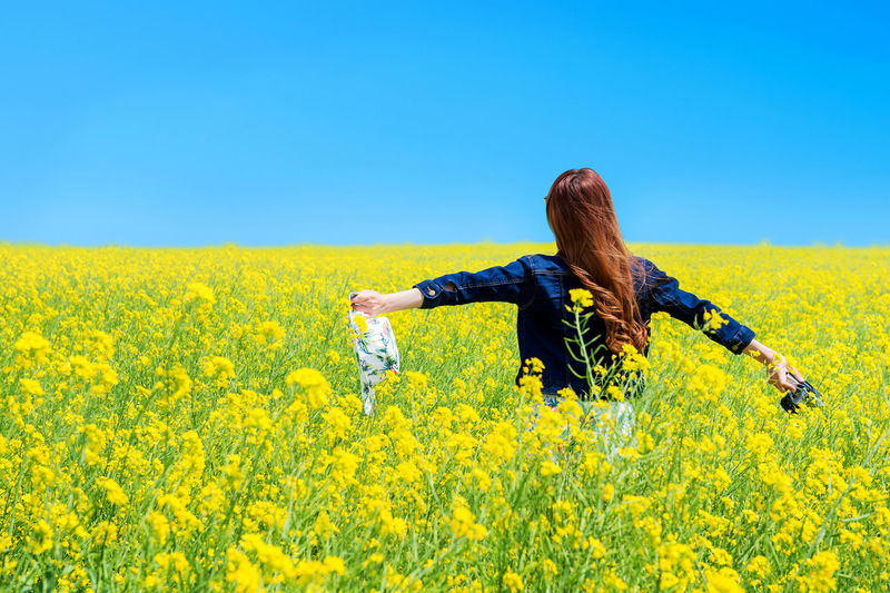 Rear view of woman with camera standing at rape field