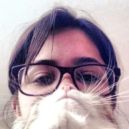 Catbeard Cat Instacat Me pinknoise purpleglasses picoftheday kitten girlandcat catstagram beard cute sweety endoftags