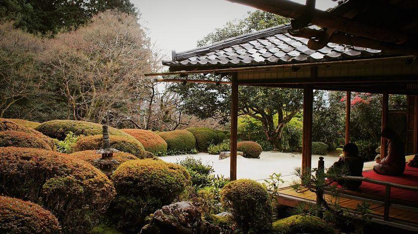 詩仙堂 Kyoto,japan Kyoto Japan Japanese Garden Japan Photography Tree Architecture Built Structure Religion Spirituality Gazebo Place Of Worship Travel Destinations Shrine Building Exterior No People