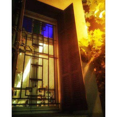тель-авивских окон негасимый свет окно улица прогулкасхорошимчеловеком вечернийсвет вечер evening eveningwalk nightlight tlv world_best world_beststreet window instaphoto instagram_israel instaisrael instagram_israel_ myisrael