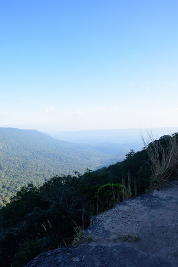 Travel pa deo die cliffs The KHAOYAI NATIONAL PARK NAKHON Beauty In Nature Blue Clear Sky Day Landscape Nature No People Outdoors Scenics Sky Tranquil Scene Tranquility Tree