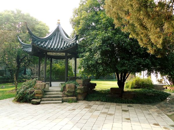 Chinese Garden Chinese Culture Chinese Style Shanghai, China Garden Beauty Garden Architecture Urban Garden Natural Beauty