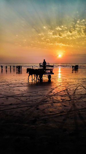 Silhouette man riding horse cart at beach during sunset