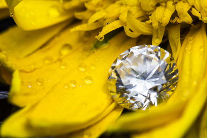 Gerber Flower Yellow Leaf close-up Micro Diamond Jewelry Ring Pendant ct Present Accessories Christmas Birthday Memorial day Micro Marriage Christmas Close-up Diamond Diamonds EyeEm EyeEm Best Edits EyeEm Best Shots EyeEm Best Shots - Nature EyeEm Gallery Eyeemphotography Flower Gerber Jewelry Leaf Marriage  Marriage Ceremony Memorial Day Memorial Day Pendant Pendants Present Presents Ring Rings Yellow