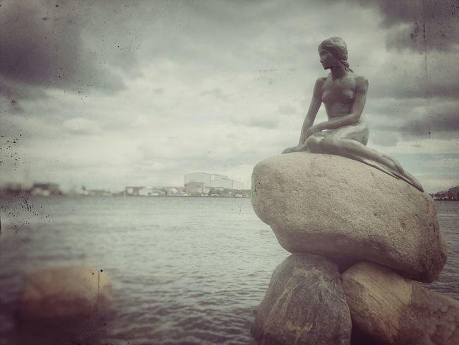 Copenhagen Little Mermaid  Den Lille Havfrue Kleine Meerjungfrau Sightseeing
