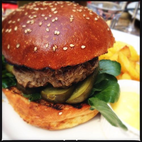 Wild boar burger Food