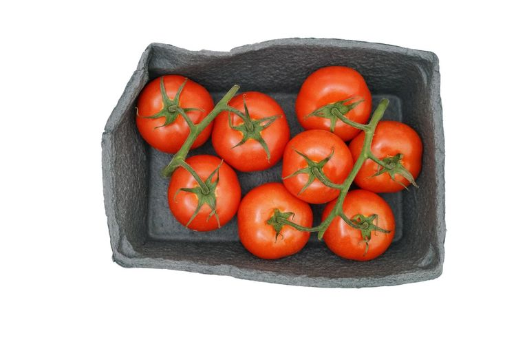 Fresh tomatoes in a box Isolated on white Red Vegetable Raw Tomaten Fresh Shopping Box Isolated Isolated On White Isolated White Background Nobody Food Food And Drink Healthy Eating Wellbeing Studio Shot Freshness Vegetable White Background Cut Out Tomato No People Directly Above Group Of Objects Red High Angle View Medium Group Of Objects Healthy Lifestyle
