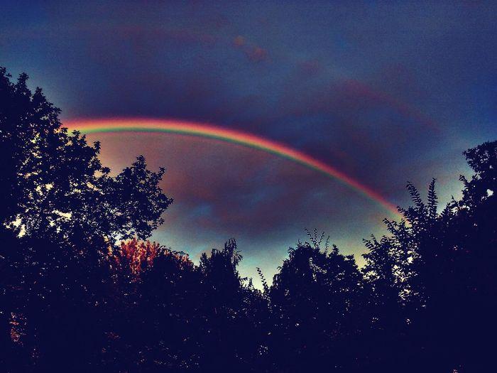 Rainbow🌈 Sky 🌌