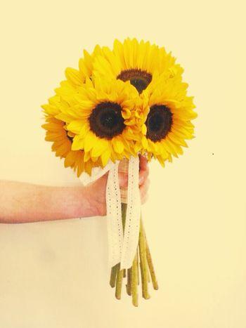 Lemon By Motorola Sunflower Flowers,Plants & Garden Yellow Flower Sunnyday☀️ Hellosunshine EyeEm Nature Lover Pictureoftheday EyeEmBestPics
