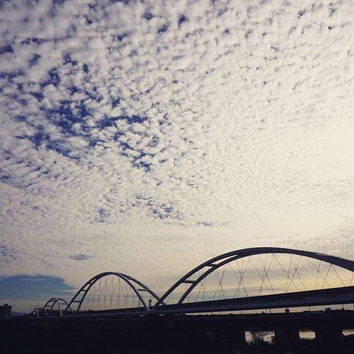 川を目指して1時間。☀☁🌉←←🚲 . 淀川河川公園 大阪 OSAKA Osakawalk Japan Riverside River Brigde 鱗 鱗雲 うろこ雲 Sky Cloud カコソラ Autumn Fall Autumnlove