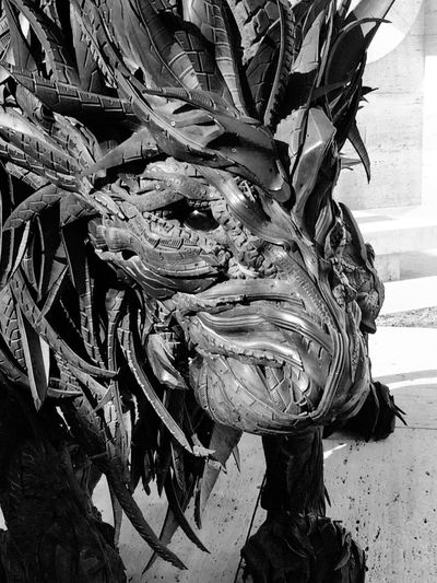 A lion made from recycled tires. Public Art Lightinstallation Recycle & Reuse Art Recycled Tires Art With Recycled Tires Reused Tires Upcycled Tires Day Pattern Plant Part Close-up Art And Craft Built Structure Creativity Textured