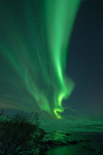 Great northern lights at a mountain outside Alta city, in northern Norway, Finnmark. Aurora Borealis Finnmark Northern Lights Norway Alta Astronomy Aurora Borealis Norway Aurora Polaris Beauty In Nature Landscape Nature Night No People Northern Lights Norway Scenics - Nature Sky Snow Winter