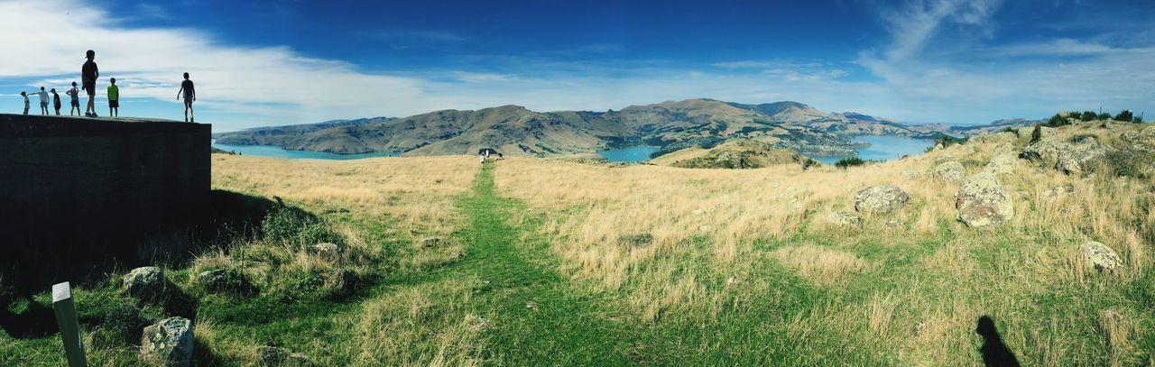 New Zealand Beauty In Nature Field Landscape Cloud - Sky EyeEmNewHere Grass Day The Week On EyeEm