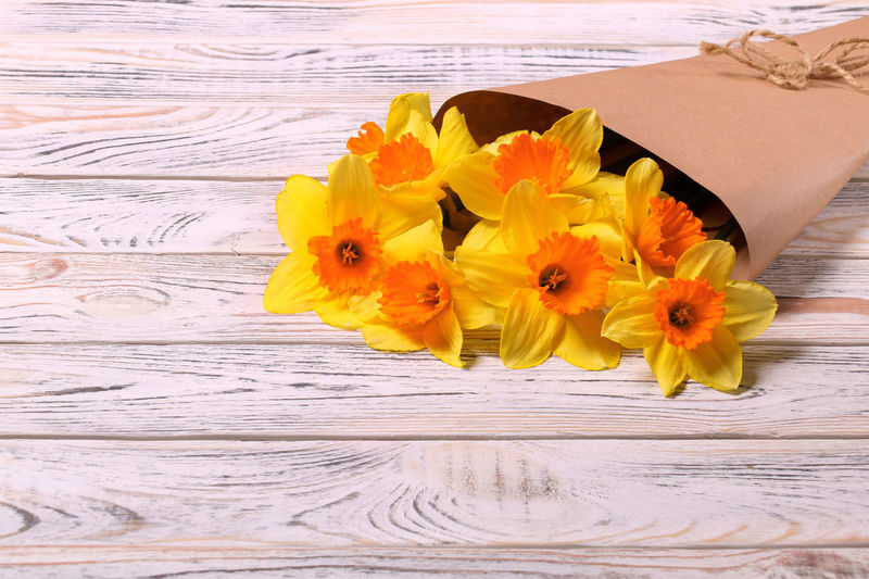 Bouquet of yellow daffodils in craft paper on wooden table Craft Paper Bouquet Of Flowers For You ;-) Table Wood - Material Freshness Close-up Vulnerability  No People Fragility Inflorescence Flower Head Nature Petal Plant Yellow Beauty In Nature Flower Flowering Plant Daffodils Daffodils Flowers Copy Space Postcard Congratulations
