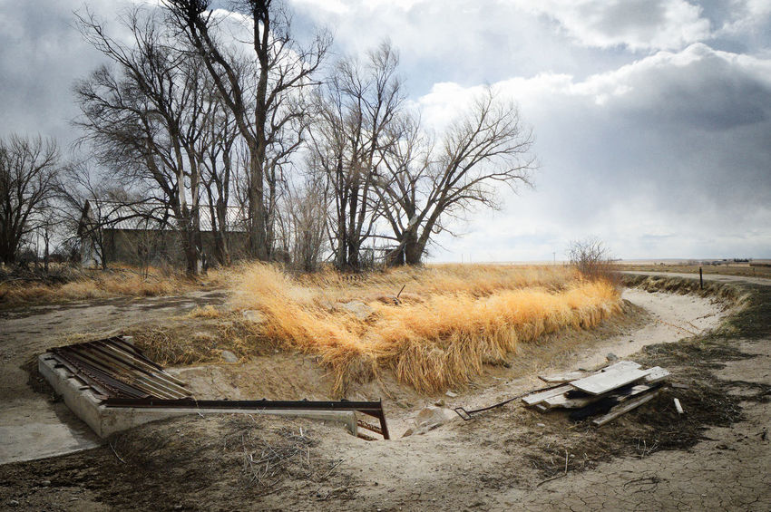 Irrigation ditch Rural Huntley Wyoming Bare Tree Cloud - Sky Day Ditch Outdoors Small Town