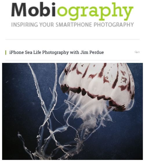 Sending out a heartfelt thank you to Mobiography Magazine for this wonderful write up & interview. http://www.mobiography.net/inspiration/jim-perdue/ IPhoneography Jim Perdue Jellyfish Ocean Monterey Bay Aquarium Mobilephotography