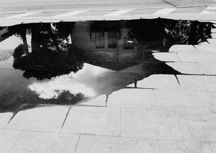 Day Outdoors Puddle Water Full Frame No People Close-up Nature Architecture Perspective Black & White Italy Community Road Sky The Way Forward Nature City Tree Cloud - Sky Pavements Black & White Cloud Sky After Rain