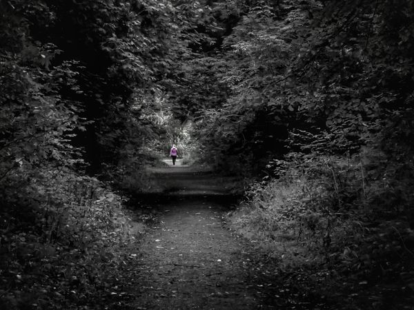 The woman in pink Hello World Taking Photos Check This Out From My Point Of View Ireland🍀 No Edit No Fun Beauty In Nature Landscape Light And Shadow Eyeem2017 In The Forest 🌳🌲🌾 Out Walking My Dog Outdoors Day Bnw Splash Lost In The Landscape The Places I've Been Nature EyeEm Edits From My Eyes To Yours Trees And Leaves Lost In The Woods Pink Color Enjoying Life