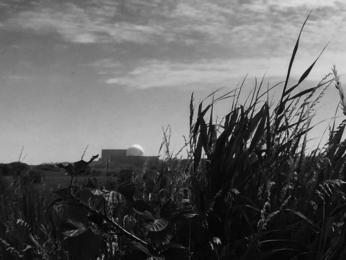 Black & W Black & White Nuclear Power Plant