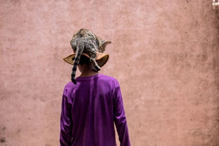 Rear View Boy With Cat On Hat Against Wall