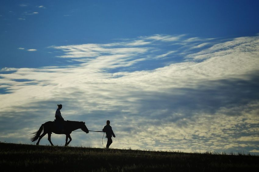 Cloudy Sky Horse And Rider Silouette & Sky Silhouettes Blue Sky Morning Landscapes Enjoying The View Morning Light Landscape The Great Outdoors - 2016 EyeEm Awards On The Road Travel Quiet Moments Nature Photography Abstract Grassland Horses
