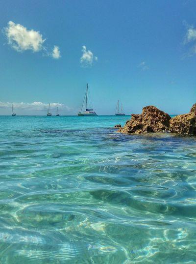 water world 🌊