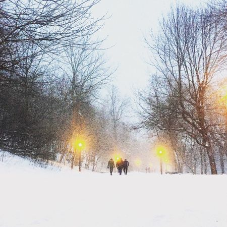 Happy New Year Happy New Year Montréal Winter The Week Of Eyeem