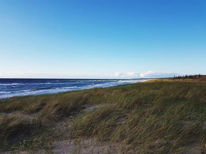 Beach Sea Water Sand Sky Nature Beauty In Nature Horizon Over Water Outdoors Tranquility Day Scenics Wave Clear Sky No People Landscape Freshness Germany🇩🇪 Samsung Galaxy S7 Meer, Sea, See, Ozean, Ocean, Welle, Wave, Woge, Wasser, Water, Sand, Strand, Beach, Weiss, Weiß, White, Blau, Blue, Grün, Green, Himmel, Sky, Wolke, Cloud, Tide, Ebbe, Flut, Ruhe, Calm, Erholung, Recreation, Ferien, Urlaub, Holiday, Vacancy, Vacanci, Son Ostsee Ostsee, Deutschland, Meer, Rügen, Freiheit, Boot, Himmel, Sonne Ahrenshoop Summer Wave