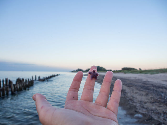 Cropped hand of person holding starfish at beach against sky