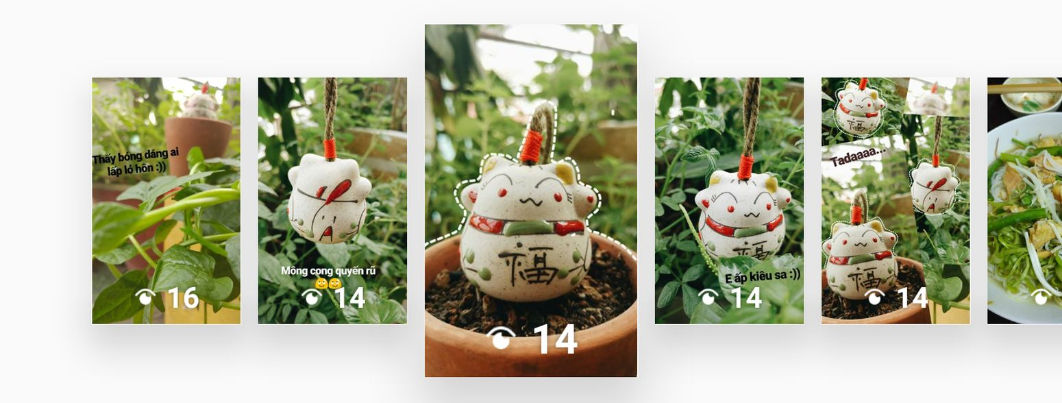 Yaaaaa Flower Plant Freshness Nature Healthy Eating Postcard Smiling Friends Lifestyles Beauty Tree 礼物 老师 Greenhouse 很可爱 Gift From China Cat 小猫