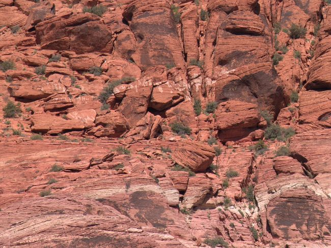 Red Rock Red Rock Canyon Red Rock Country Red Rock State Park Red Rock, Las Vegas, Nevada Red Rocks  Red Rocks Park Rock Rock Climber Rock Climbers Rock Climbing Rock Climbing Area Rock Climbing Wall Rock Climbing With Friends Rock Climbing ☺ Rock Formation Rocks Rocky Mountains