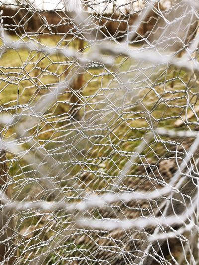 Mesh Wire Fence Mesh Fence Full Frame Backgrounds No People Day Pattern Close-up Fragility Focus On Foreground Complexity Detail
