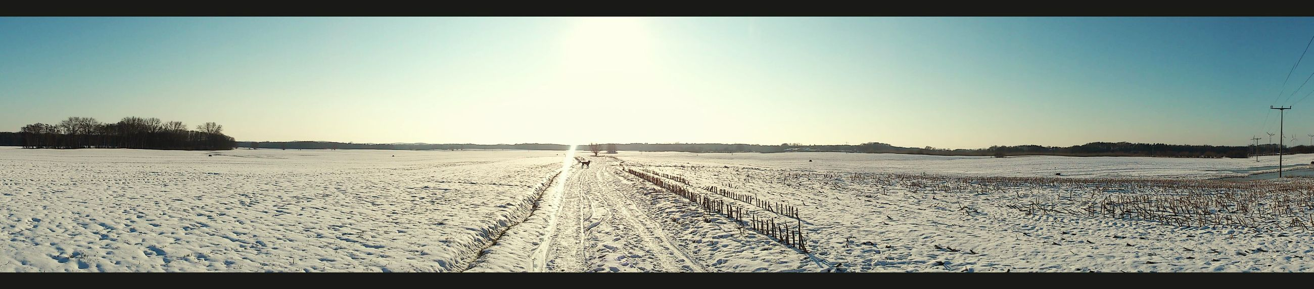 clear sky, sun, sunlight, tranquility, transfer print, tranquil scene, copy space, landscape, the way forward, nature, scenics, sunbeam, auto post production filter, beauty in nature, sky, sunny, blue, shadow, day, snow