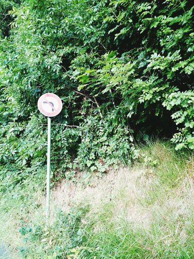 Road Signs EyeEm Nature Lover