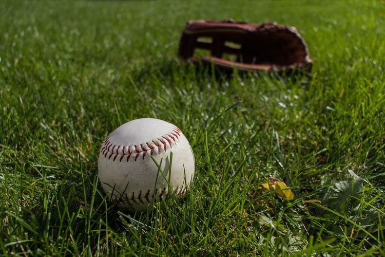 Ground Out Ball Baseball - Ball Baseball - Sport Baseball Glove Baseball Pitcher Close-up Day Grass Green Color No People Outdoors Playing Field Sport