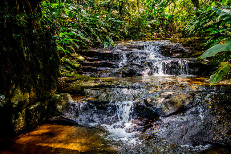 Ecoturismo Meleiro, Brazil Beauty In Nature Blurred Motion Day Ecoturism Forest Freshness Grass Motion Nature No People Outdoors Scenics Tree Water Waterfall