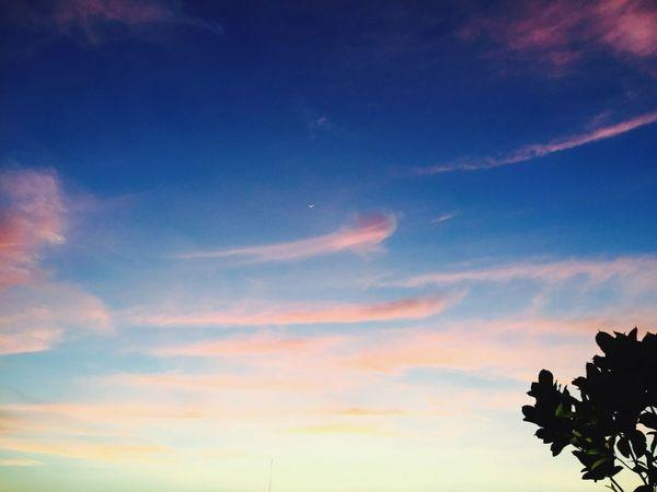 Fall of dusk.