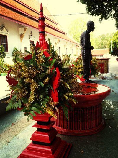 Temple Buddha Taking Photos Praying