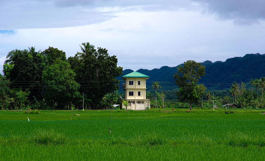 House on field by trees against sky