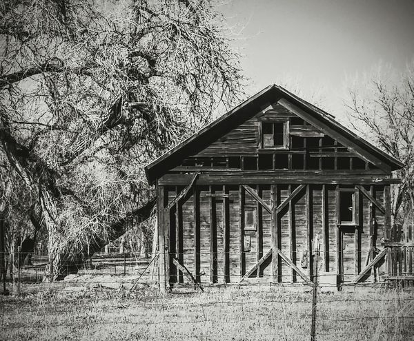 Black and white Blackandwhite Photography country roads Barn historical Old Barn colorado life Fence Outdoor Photography Colorado Times abandoned structure rural Black And White Welcome To Black