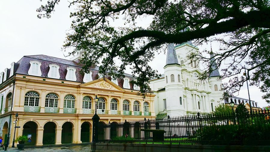 The Cabildo and St. Louis Cathedral Architecture Building Exterior City Travel Destinations Government Travel Built Structure History Façade NOLA New Orleans, LA Louisiana Church Cathedral Catholic Church Travel Photography Sightseeing Exploring Cultural Heritage Building Feature Outdoors Day